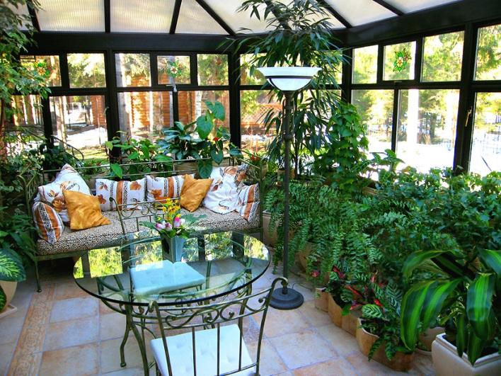дизайн квартир растения